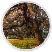 Mossy Trees At Sunset Round Beach Towel