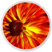 Mostly Orange Dahlia Flower Round Beach Towel