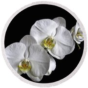Moth Orchid Trio Round Beach Towel by Ron White