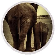 Mother And Baby Elephant In Black And White Round Beach Towel