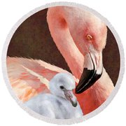 Mother And Baby Flamingo Round Beach Towel