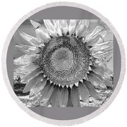 Mother Earth Unloved Round Beach Towel
