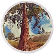 Mother Tree Round Beach Towel