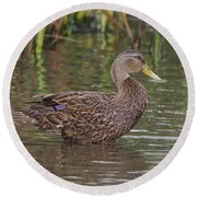 Mottled Duck Drake Round Beach Towel