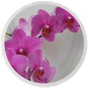 Mottled Orchid 1 Round Beach Towel