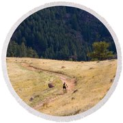 Mountain Biker Round Beach Towel