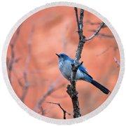 Mountain Blue Bird Round Beach Towel
