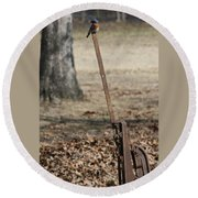 Mountain Bluebird On Well Pump V Round Beach Towel