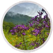 Mountain Butterfly  Round Beach Towel