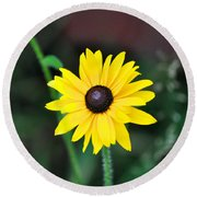 Mountain Daisy Yellow Round Beach Towel