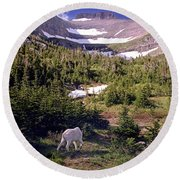 Mountain Goat 5 Round Beach Towel