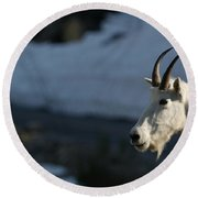 Mountain Goat Glacier National Park Round Beach Towel