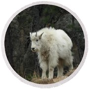 Mountain Goat Kid Round Beach Towel