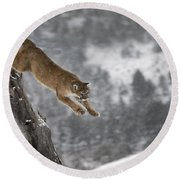 Mountain Lion - Silent Escape Round Beach Towel by Wildlife Fine Art
