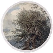 Mountainous Landscape With Beech Trees Round Beach Towel