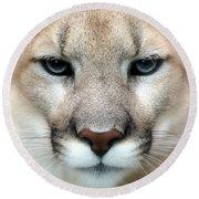 Mountian Lion Round Beach Towel