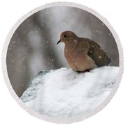 Mourning Dove In Snow Round Beach Towel