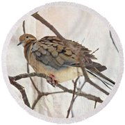 Mourning Dove - Sing No Sad Song For Me #2 Round Beach Towel