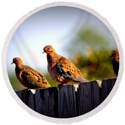 Mourning Doves On Fence Round Beach Towel