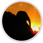 Mr Gobbles At Sunset Round Beach Towel