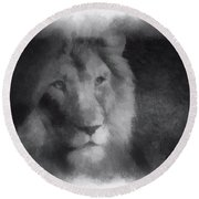 Mr Lion Photo Art 01 Round Beach Towel
