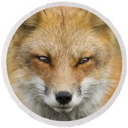 Mr Red Portrait Round Beach Towel