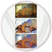 Mr. Tortoise Vertical Triptych Round Beach Towel