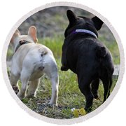 Ms. Quiggly And Buddy French Bulldogs Round Beach Towel