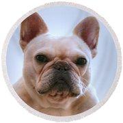 French Bulldog Seriously Round Beach Towel