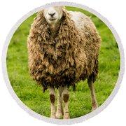Mt Angel Abbey Sheep - Oregon Round Beach Towel