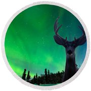 Mule Deer And Aurora Borealis Over Taiga Forest Round Beach Towel