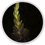 Mullein 2013 Round Beach Towel