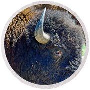 Multi-color-eyed Bison Near Wildlife Loop Road In Custer State Park-south Dakota Round Beach Towel