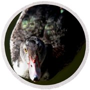 Muscovy 14-2 Round Beach Towel