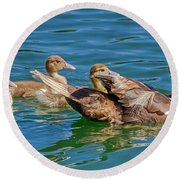 Muscovy Family Round Beach Towel
