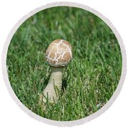 Mushroom 01 Round Beach Towel