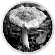 Mushroom In Black And White Round Beach Towel