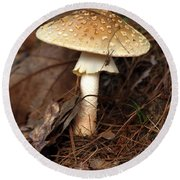Mushroom Round Beach Towel