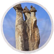 Mushroom Stems Round Beach Towel