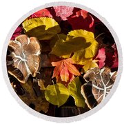 Mushrooms In Fall Leaves Round Beach Towel