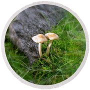 Mushrooms In Grass Round Beach Towel
