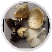 Mushrooms With Watercolor Effect 5 Round Beach Towel