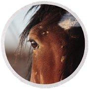 Mustang Battle Wounds Round Beach Towel