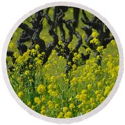 Mustard And Old Vines Round Beach Towel