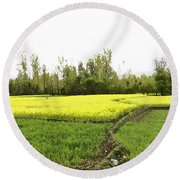 Mustard Fields In Kashmir On The Way To The Town Of Sonamarg Round Beach Towel
