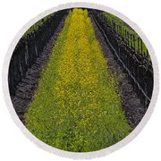 Mustard Grass In Vineyards Round Beach Towel