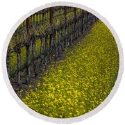Mustrad Grass In The Vineyards Round Beach Towel by Garry Gay