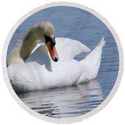 Mute Swan 1 Round Beach Towel by Sharon Talson