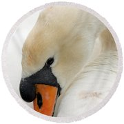 Mute Swan Fine Art Photograph Round Beach Towel