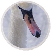 Mute Swan On Ice Round Beach Towel